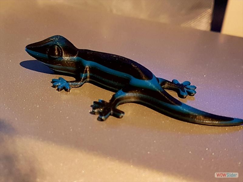 purefil of Switzerland - ABS - Multicolor - Gecko